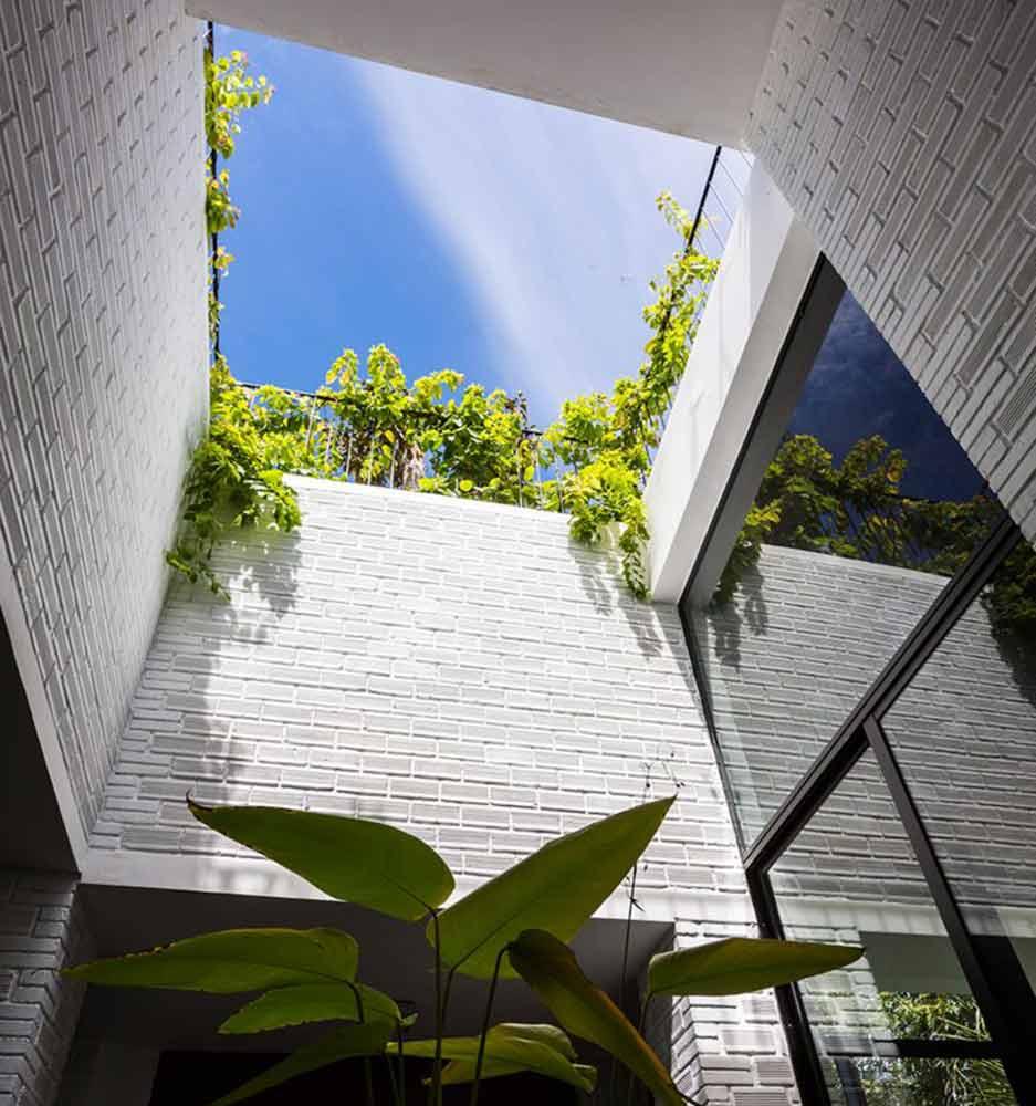 Ý tưởng thiết kế vườn rau tầng thượng